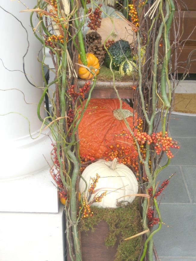 fall accent pumpkin 1