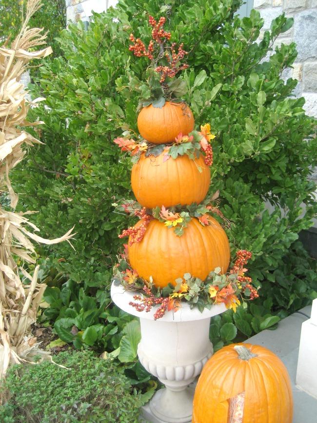 fall accent pumpkin 2